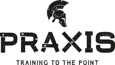 PRAXIS logo png